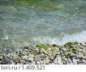 Купить «Волна на каменистом морском береге», фото № 1409521, снято 11 июня 2009 г. (c) Емельянова Светлана Александровна / Фотобанк Лори