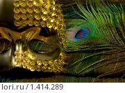 Купить «Золотая карнавальная маска», фото № 1414289, снято 24 января 2010 г. (c) Елисей Воврженчик / Фотобанк Лори