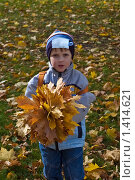 Мальчик с букетом кленовых листьев в осеннем парке. Стоковое фото, фотограф Матвеева Наталья / Фотобанк Лори