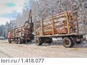 Купить «Лесовоз грузит бревна», эксклюзивное фото № 1418077, снято 19 февраля 2009 г. (c) Алёшина Оксана / Фотобанк Лори
