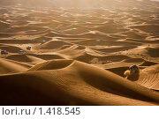 Сафари на джипе в пустыне (2010 год). Стоковое фото, фотограф Анна Диордиева / Фотобанк Лори