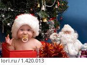 Купить «Малышка сидящая в коробке около наряженной ёлки», фото № 1420013, снято 6 января 2009 г. (c) Юлия Шилова / Фотобанк Лори