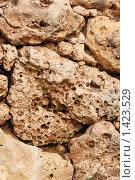 Купить «Фактура камня», фото № 1423529, снято 22 ноября 2007 г. (c) Николай Богоявленский / Фотобанк Лори
