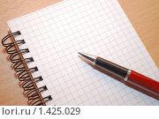 Купить «Блокнот и ручка на столе», фото № 1425029, снято 28 января 2010 г. (c) Глазков Владимир / Фотобанк Лори