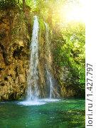 Купить «Водопад в лесу», фото № 1427797, снято 19 июня 2008 г. (c) Andrejs Pidjass / Фотобанк Лори