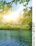 Купить «Лесное озеро», фото № 1427877, снято 19 июня 2008 г. (c) Andrejs Pidjass / Фотобанк Лори