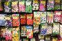 Пакетики семян цветов в магазине, эксклюзивное фото № 1428693, снято 25 апреля 2009 г. (c) Александр Щепин / Фотобанк Лори