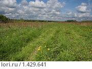 Купить «Сельский пейзаж», фото № 1429641, снято 21 мая 2009 г. (c) Николай Богоявленский / Фотобанк Лори