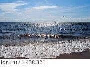 Финский залив летним днём. Стоковое фото, фотограф Елена Реднева / Фотобанк Лори