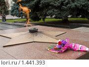 Купить «Вечный огонь в Гомеле, Беларусь», фото № 1441393, снято 25 октября 2008 г. (c) Владимир Фаевцов / Фотобанк Лори