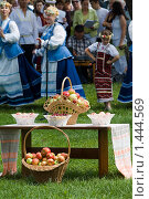 Купить «Яблоки на траве, Беларусь», фото № 1444569, снято 19 августа 2009 г. (c) Владимир Фаевцов / Фотобанк Лори
