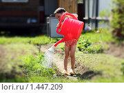 Купить «Маленький мальчик поливает грядку из большой лейки», фото № 1447209, снято 30 мая 2009 г. (c) Андрей Аркуша / Фотобанк Лори