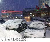 Купить «Снегопад в Москве», фото № 1455205, снято 30 декабря 2009 г. (c) Елена Колтыгина / Фотобанк Лори