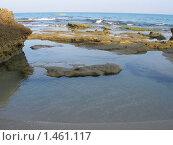 На берегу Средиземного моря. Стоковое фото, фотограф Ирина Никитина / Фотобанк Лори