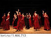 Купить «Фламенко», фото № 1466713, снято 7 февраля 2010 г. (c) Яременко Екатерина / Фотобанк Лори