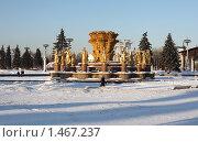Купить «Фонтан дружбы народов зимой. ВВЦ», эксклюзивное фото № 1467237, снято 6 февраля 2010 г. (c) ФЕДЛОГ / Фотобанк Лори