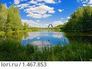 Купить «Летний пейзаж с озером и аркой вантового моста», фото № 1467853, снято 15 августа 2018 г. (c) Михаил Марковский / Фотобанк Лори