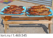 Купить «Копченая рыба», эксклюзивное фото № 1469545, снято 8 апреля 2009 г. (c) Алёшина Оксана / Фотобанк Лори