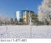 Город Волгодонск. Иней на деревьях. Информационный центр АЭС. Стоковое фото, фотограф Валерий Шевяков / Фотобанк Лори
