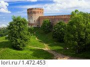 Купить «Башня Орел смоленской крепостной стены», фото № 1472453, снято 10 июня 2006 г. (c) Михаил Марковский / Фотобанк Лори