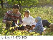 Семья на пикнике в парке (2009 год). Редакционное фото, фотограф Лизунова Анастасия / Фотобанк Лори