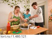 Купить «Семья готовит курицу гриль», фото № 1480121, снято 15 февраля 2010 г. (c) Федор Королевский / Фотобанк Лори