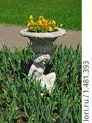 Купить «Екатерининский парк», эксклюзивное фото № 1481393, снято 11 июня 2009 г. (c) lana1501 / Фотобанк Лори