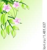 Цветы розовой орхидеи. Стоковая иллюстрация, иллюстратор Лищук Руслан Викторович / Фотобанк Лори