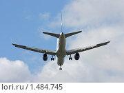 Купить «Улетающий пассажирский самолет», фото № 1484745, снято 26 сентября 2009 г. (c) Игорь Долгов / Фотобанк Лори
