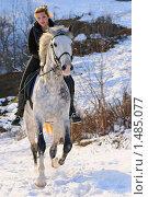 Купить «Девушка на серой лошади в скачет в гору», фото № 1485077, снято 2 февраля 2010 г. (c) Титаренко Елена / Фотобанк Лори