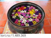 Купить «Экзотические цветы в чаше с водой», фото № 1489369, снято 9 января 2010 г. (c) Лифанцева Елена / Фотобанк Лори