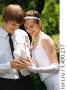 Купить «Молодожены с парой белых голубей», фото № 1490217, снято 13 июня 2009 г. (c) Владимир Сурков / Фотобанк Лори