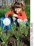 Улыбающаяся маленькая девочка с лейкой сидит на овощной грядке. Стоковое фото, фотограф Sergii Korshun / Фотобанк Лори