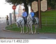 Купить «Конная милиция около Кремля», эксклюзивное фото № 1492233, снято 8 сентября 2008 г. (c) lana1501 / Фотобанк Лори