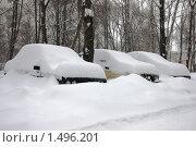 Купить «Занесенные снегом машины», фото № 1496201, снято 22 февраля 2010 г. (c) Артем Ефимов / Фотобанк Лори