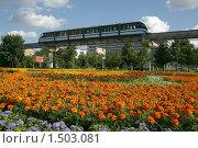 Купить «Москва. Монорельсовый транспорт», фото № 1503081, снято 27 июля 2008 г. (c) Владимир Ременец / Фотобанк Лори