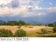 Средиземноморский пейзаж. Италия. Область тоскана (2008 год). Стоковое фото, фотограф ElenArt / Фотобанк Лори
