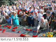 Купить «Дань памяти погибшим», фото № 1510553, снято 23 августа 2008 г. (c) Александр Леденев / Фотобанк Лори