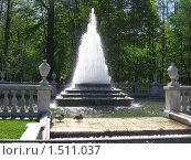 Утки у фонтана (2009 год). Редакционное фото, фотограф Неробова Лидия / Фотобанк Лори