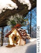 Заснеженный домик. Стоковое фото, фотограф Неробова Лидия / Фотобанк Лори