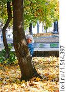 Купить «Девочка выглядывает из-за дерева», фото № 1514397, снято 31 октября 2009 г. (c) Юрий Брыкайло / Фотобанк Лори