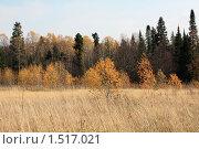 Осенний пейзаж. Стоковое фото, фотограф Ирина Соснина / Фотобанк Лори