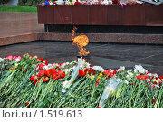 Купить «Москва. Александровский сад. Вечный огонь», эксклюзивное фото № 1519613, снято 11 мая 2009 г. (c) lana1501 / Фотобанк Лори