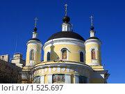 Купить «Собор Троицы Живоначальной (Троицкий собор) в Подольске», эксклюзивное фото № 1525697, снято 4 марта 2010 г. (c) Яна Королёва / Фотобанк Лори