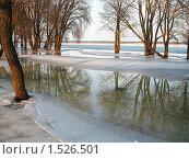 Большая вода. Стоковое фото, фотограф Владимир Далецкий / Фотобанк Лори