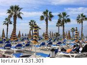 Купить «Загораем на Кипре», фото № 1531301, снято 25 декабря 2009 г. (c) Ельчанинов Вячеслав / Фотобанк Лори