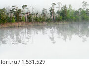 Купить «Берег лесного озера в тумане», фото № 1531529, снято 12 июня 2009 г. (c) Кекяляйнен Андрей / Фотобанк Лори