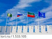 Флаги (2010 год). Стоковое фото, фотограф Евгений Яковлев / Фотобанк Лори