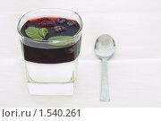 Купить «Двухслойное молочно-фруктовое желе с лесными ягодами, декорированное листиками мяты», фото № 1540261, снято 7 марта 2010 г. (c) Rogal Anna / Фотобанк Лори