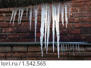Купить «Большие весенние сосульки, свисающие с крыши здания», фото № 1542565, снято 17 февраля 2010 г. (c) Илья Андриянов / Фотобанк Лори